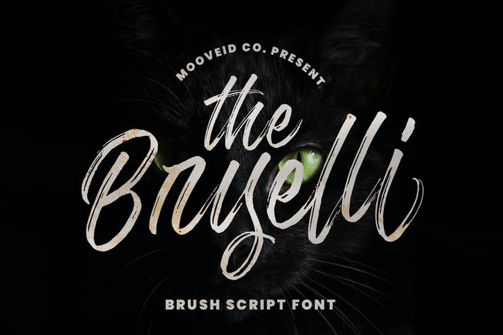 Thumbnail for The Bryelli Brush Font