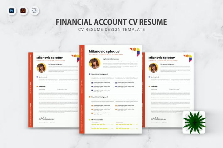 Thumbnail for Financial Accounting CV Resume