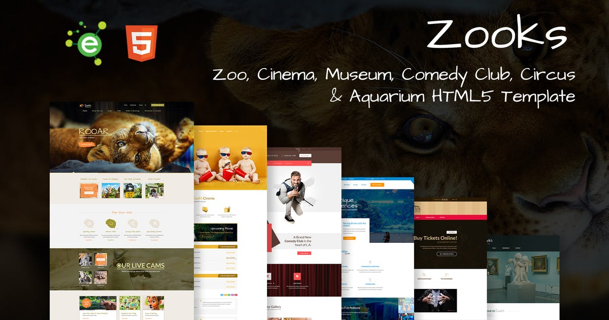 Download Zooks - 6 in 1 Multipurpose HTML5 Template by envalab