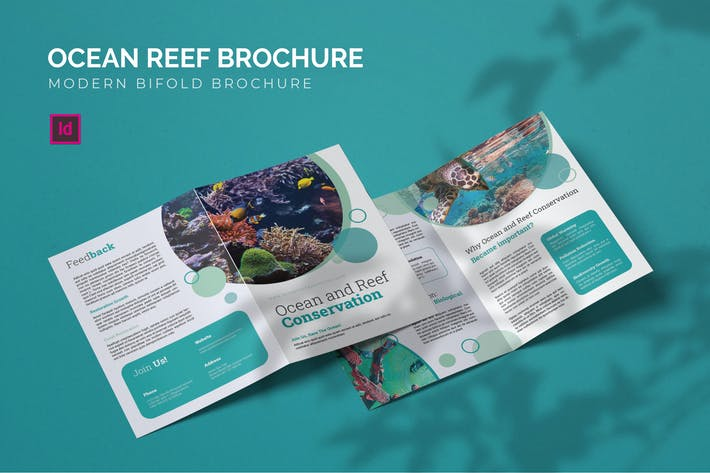 Thumbnail for Ocean Reef Conservation - Bifold Brochure
