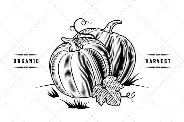 Thumbnail for Retro Pumpkins Black And White
