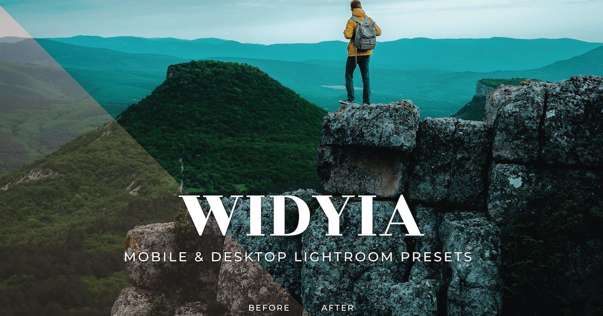 Download Widyia Mobile and Desktop Lightroom Presets by Laksmitagraphics
