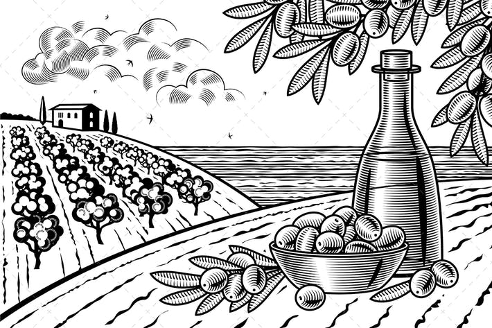 Thumbnail for Olive Harvest Landscape Black And White