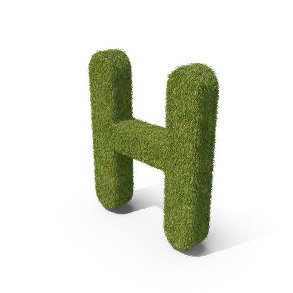 Трава заглавная буква H