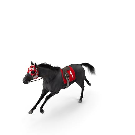 Running Racing Horse Fur