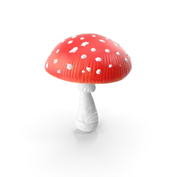 Thumbnail for Big Amanita Mushroom