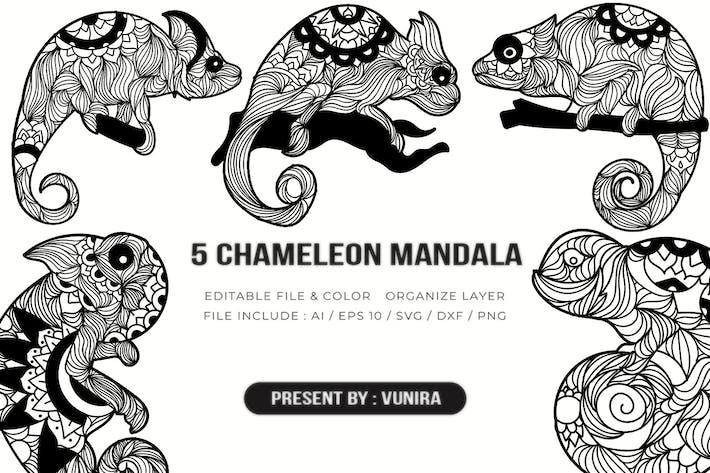 Thumbnail for 5 Chameleon Mandala | Design Illustration
