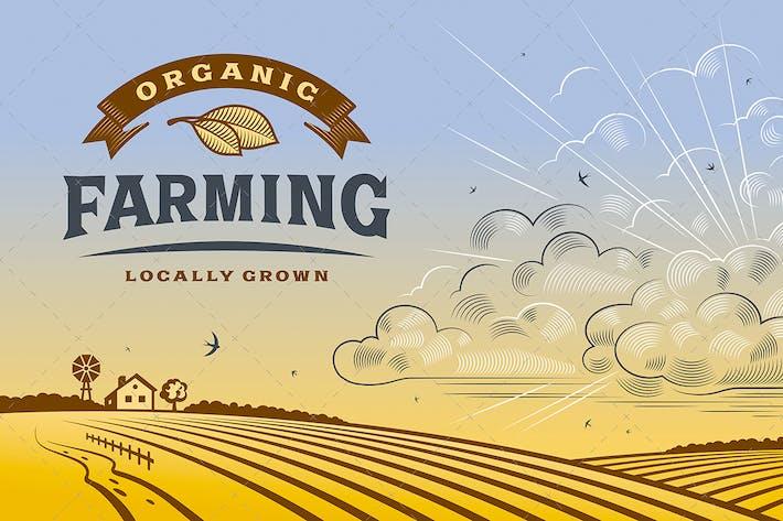 Thumbnail for Horizontal de la agricultura ecológica