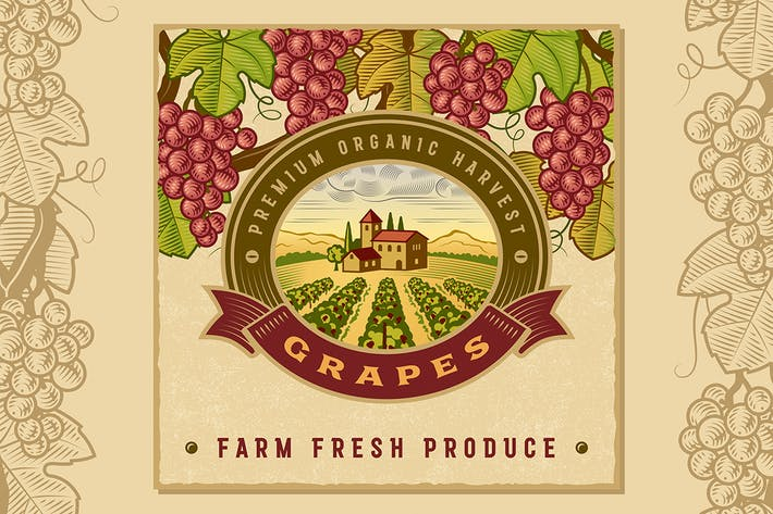 Thumbnail for Vintage Colorful Grapes Harvest Label