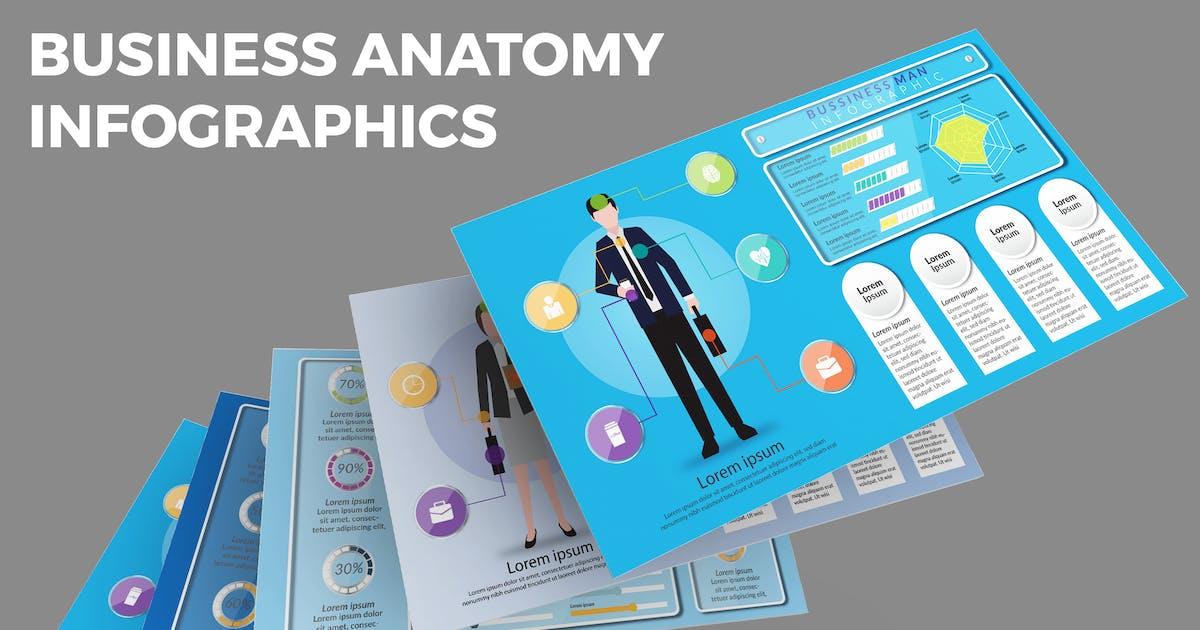 Download Business Anatomy – Infographics Design by designesto