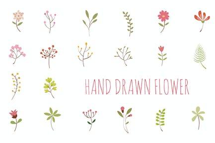 Flor dibujada Mano
