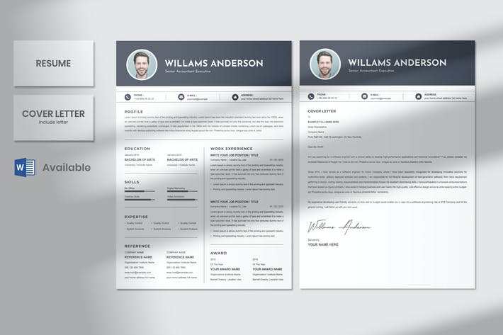 Senior Accountant Executive Resume