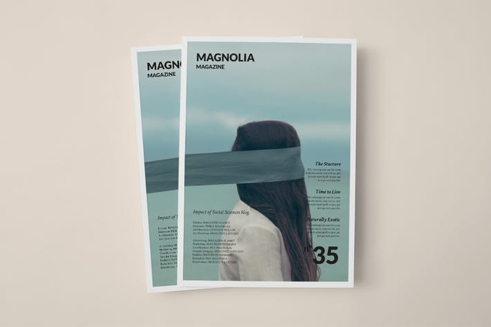 Thumbnail for Magnolia Magazine