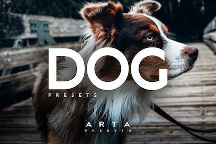 Пресеты ARTA Dogs для мобильных и настольных ПК