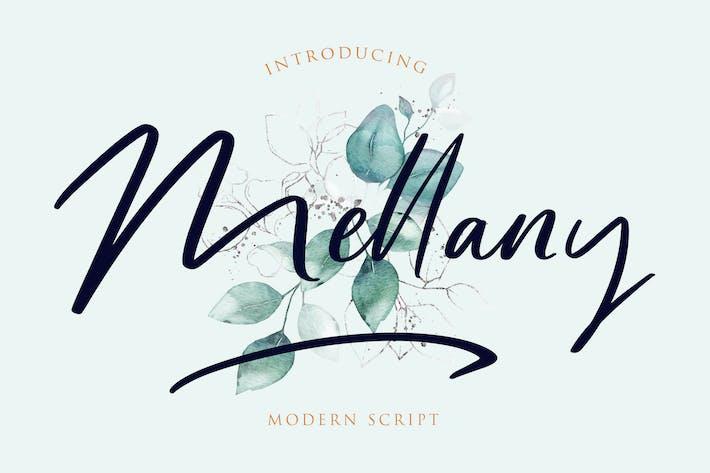 Thumbnail for Mellany Modern Script Font