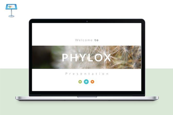 Thumbnail for PHYLOX - Multipurpose Keynote Template V44