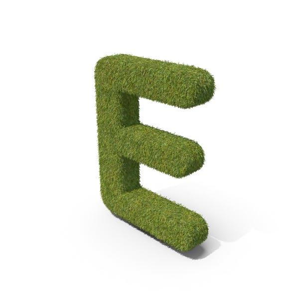 Трава заглавная буква e