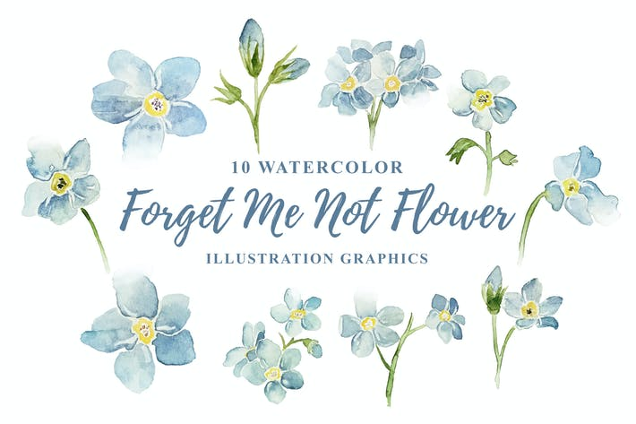 Thumbnail for 10 Watercolor Forget Me Not Flower Illustration