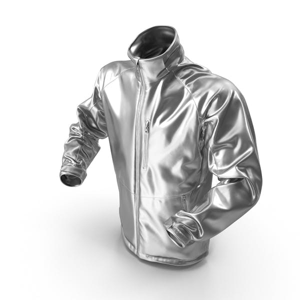 Thumbnail for Male Silver Winter Jacket