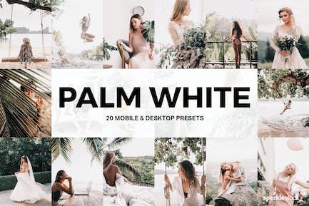 20 пресетов и LUT Lightroom белого пальмового цвета
