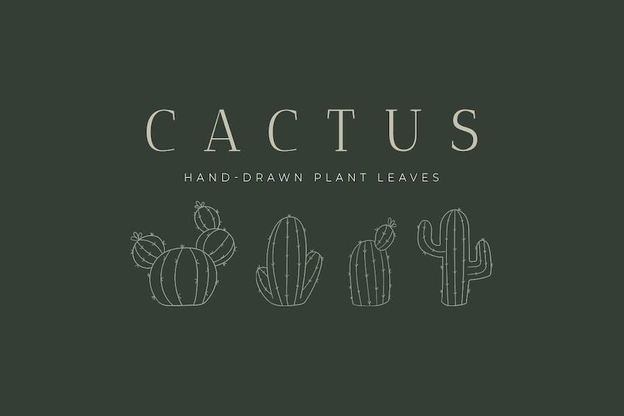 Cactus Hand-Drawn Plant