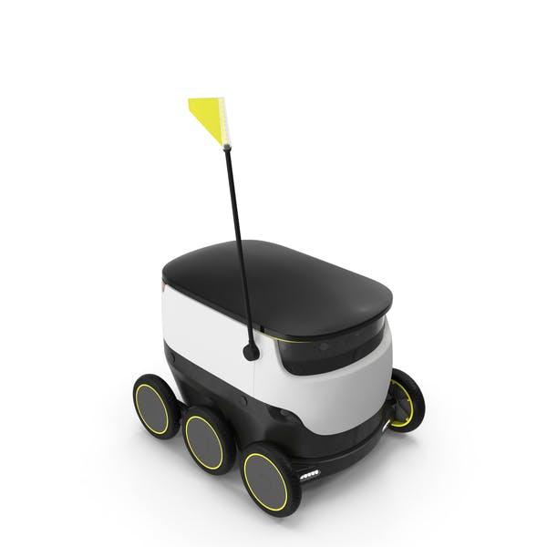 Персональный робот доставки