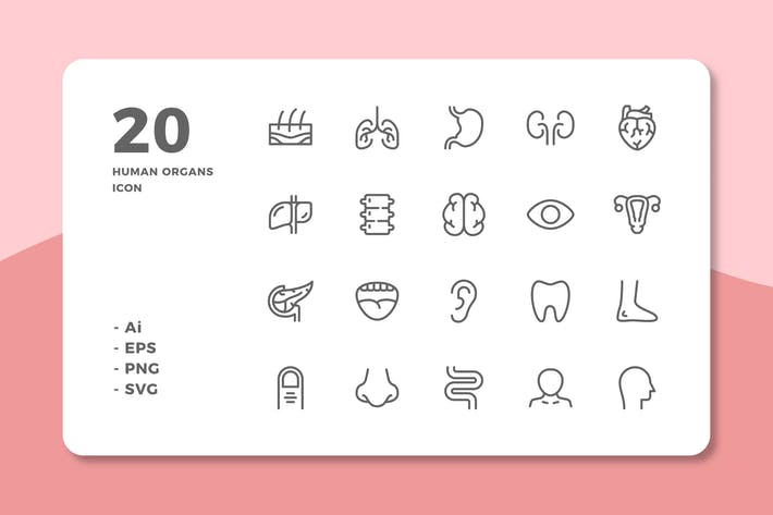Thumbnail for 20 Human Organs Icons (Line)