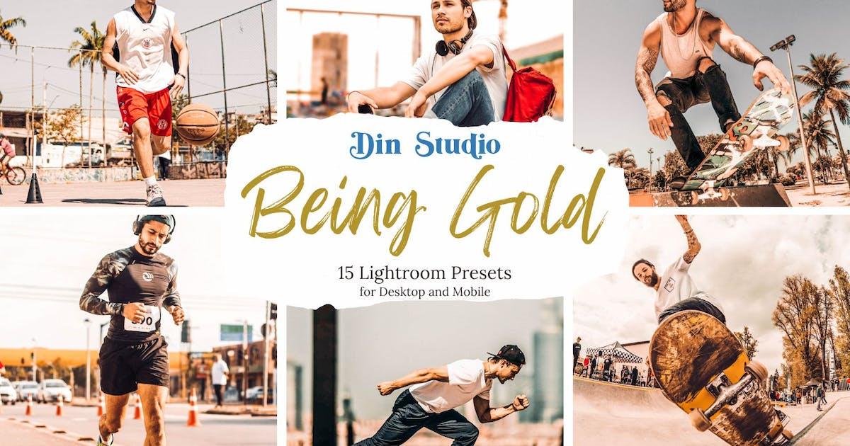 Download Being Gold Lightroom Presets by Din-Studio