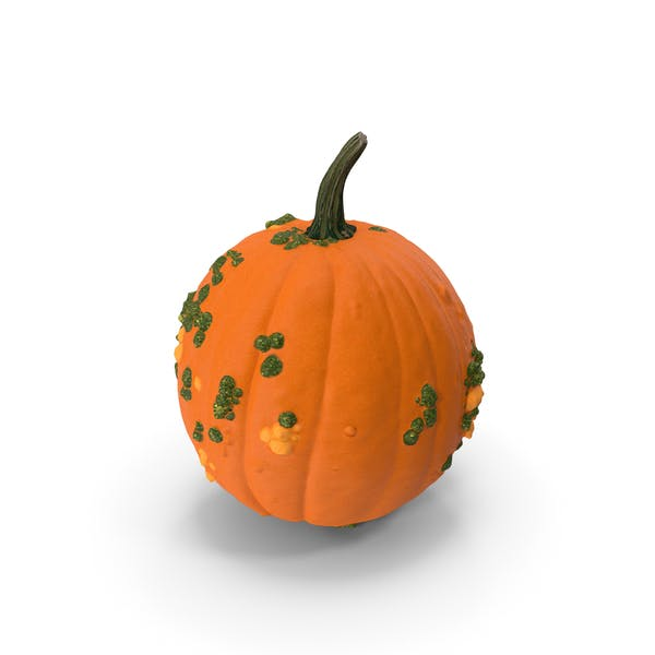 Thumbnail for Pumpkin With Warts