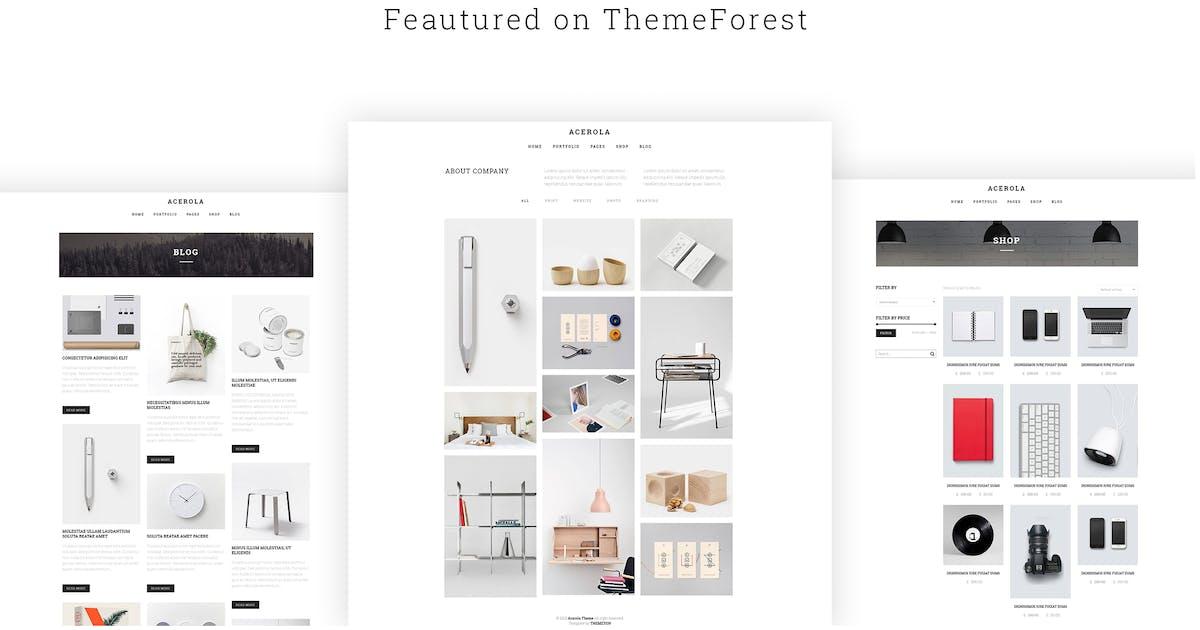 Download Acerola - Ultra Minimalist Agency WordPress Theme by themeton