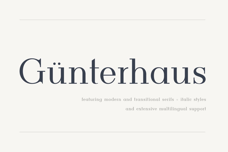 Gunterhaus---Modern-&-Transitional-Serif