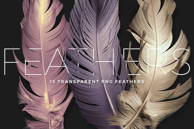 Transparent Feathers Overlays