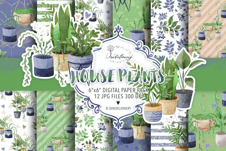 House Plants digital paper pack