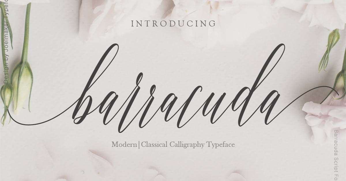 Download Barracuda Script by joelmaker