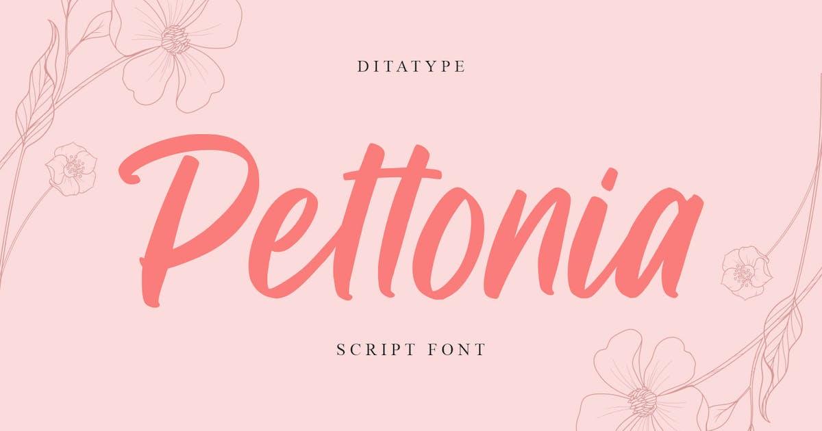 Download Pettonia Script by YumnaStudio