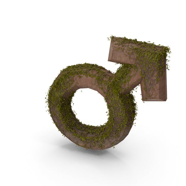 Stone With Ivy Male Symbol