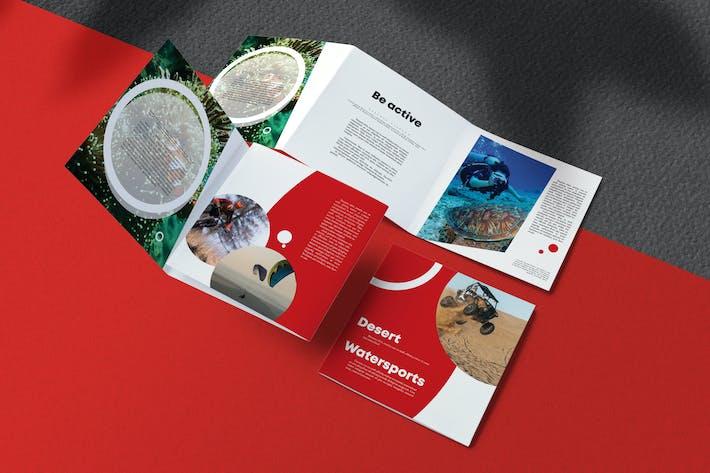 Thumbnail for Sport Brochure