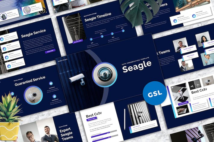 Thumbnail for Seagle - CCTV Googleslide Templates