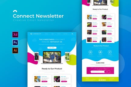 Connect   Newsletter Template