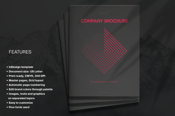 Red & Black Comany Brochure