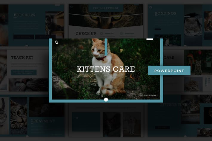 Kittens Care - Powerpoint Template