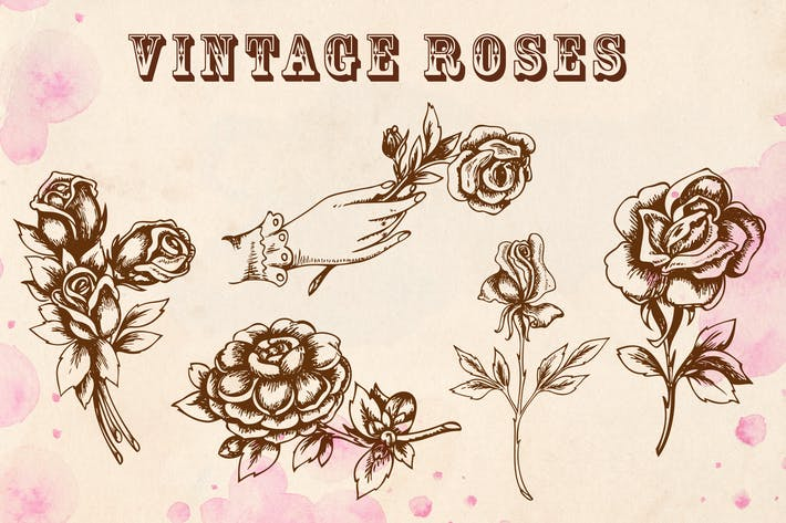 Thumbnail for Vintage Roses