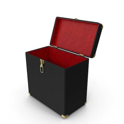 Record Carrying Case