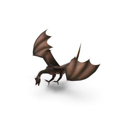 Landung des Drachen