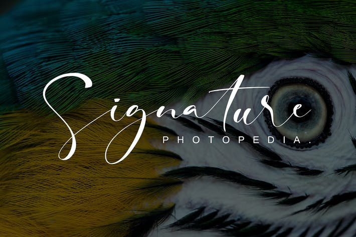 Thumbnail for Fotopedia Signature