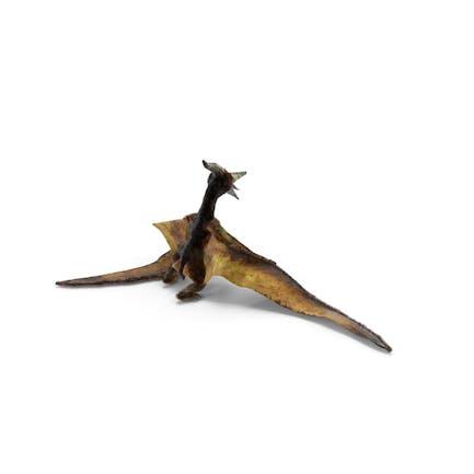 Pteranodon Fliegendes fleischfressendes Reptil Standing Pose mit Fell