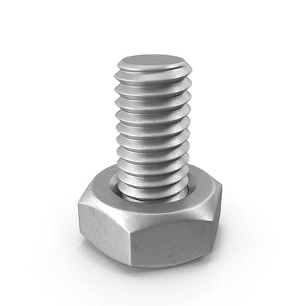 Bolt With Nut