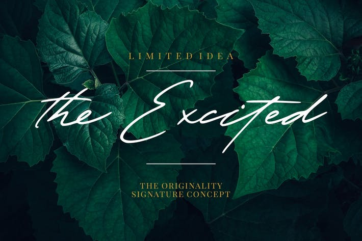 The Excited - Stylistic Signature Font