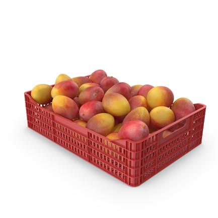 Yellow Mango Crate