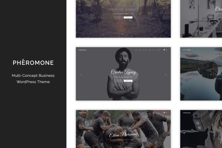 Cover Image For Pheromone - Creative Multi-Concept WordPress Theme